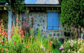 dooryard